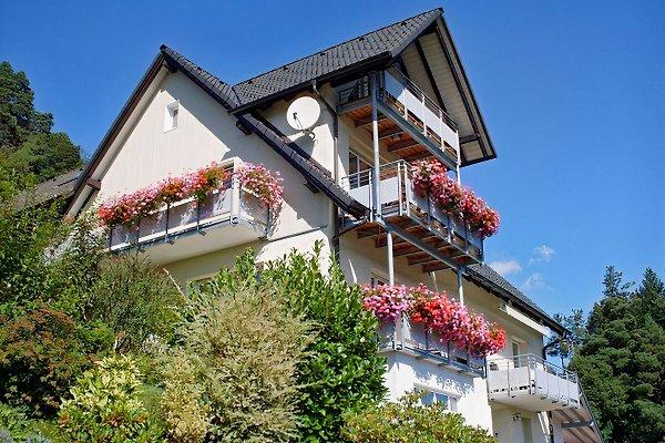 Am Keschtewaeldele in Forbach - immagine 1