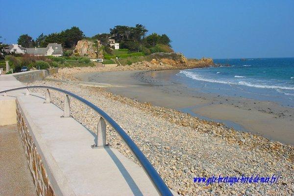 Vermietung bretagne bord de mer in Plougasnou - Bild 1