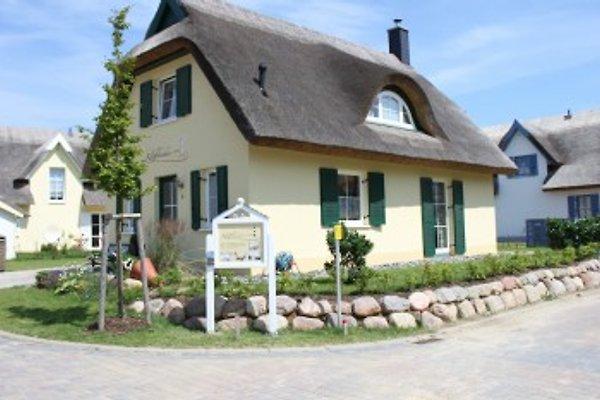 Ferienhaus Kliffkieker à Glowe - Image 1