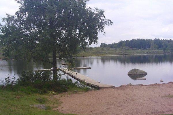 Mästocka à Laholm-Mästocka - Image 1