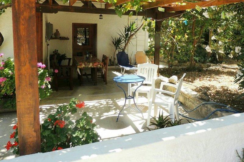Terrasse mit Vordach u.Weinlaube