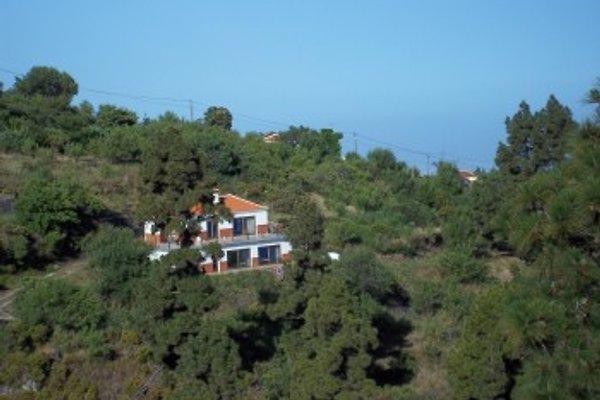 Cottage Finca Buho Chico à Las Tricias - Image 1