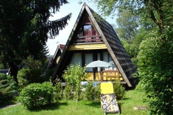 Ferienhaus Löwe in Waldkirchen - immagine 1