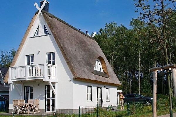 Ferienhaus Strandgut Reethus à Glowe - Image 1