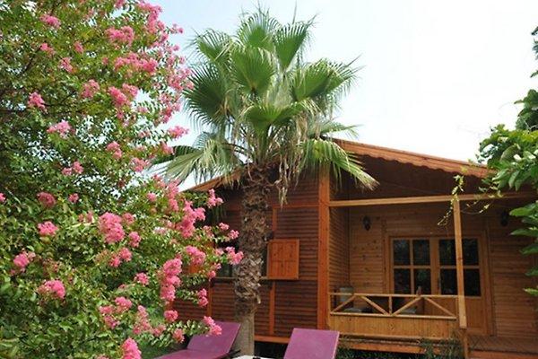 Ferienhaus Dilek en Cirali - imágen 1
