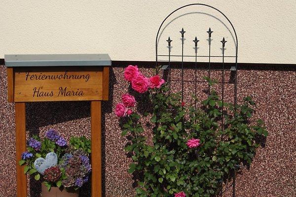 Ferienwohnung Haus Maria à Marmagen - Image 1