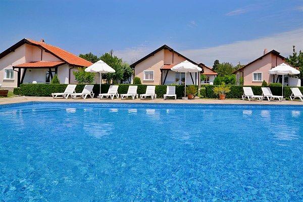 Villa Eden in Bryastovets - picture 1