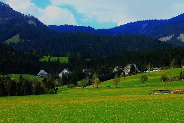 Ferienwohnung Panoramablick à Bad Mitterndorf - Image 1