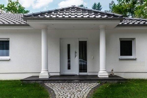 Hauseingang mit Säulen