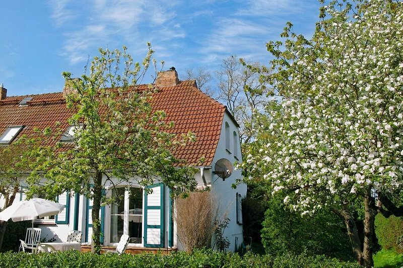 Ferienhaus Wustrow-Gruenbaum à Wustrow (Ostsee) - Image 2
