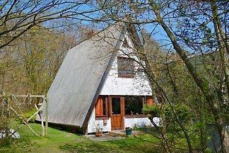 Ferienhaus Grünbaum Ahrenshoop