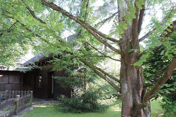 Ferienholzhaus