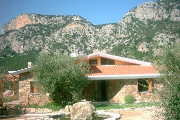 Country House Su Lidone à Dorgali - Image 1
