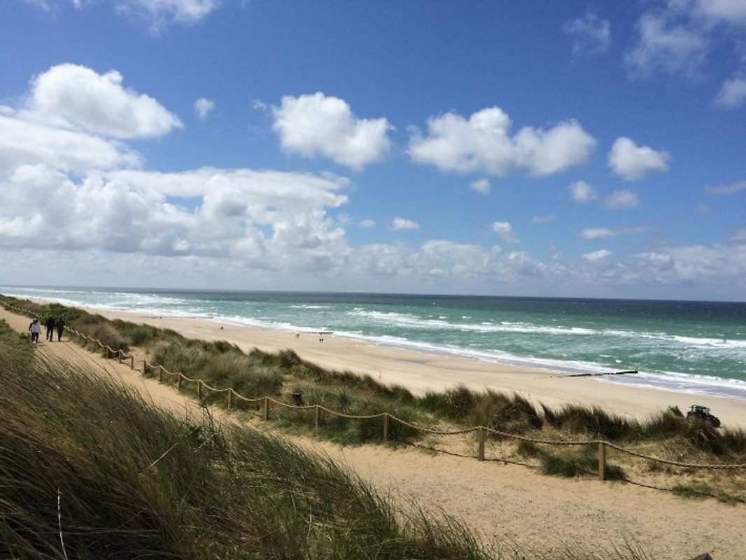 single urlaub sylt