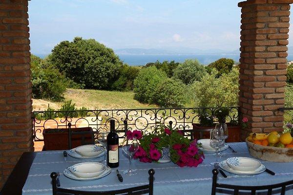 Villa Caprifogli à Alghero - Image 1
