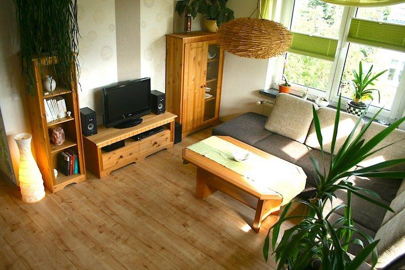 Wohnzimmer - TV, Sofa, DVD-Player