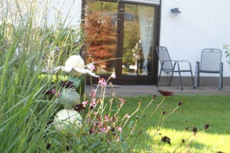 Ferienhaus Traudel à Hirschhorn - Image 2