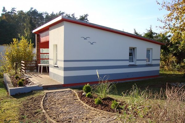 Bungalow am Plauer See in Plau am See - immagine 1