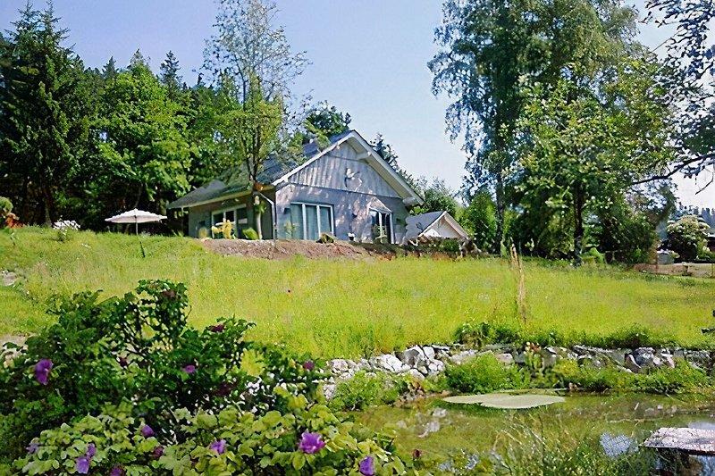 Das Ferienhaus Drei Birken inmitten der Natur