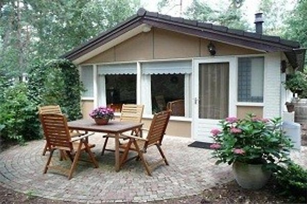 HOLIDAY BUNGALOW  nl in Beekbergen - immagine 1