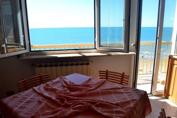 Appartamento Gabbiano in San Vincenzo - immagine 1