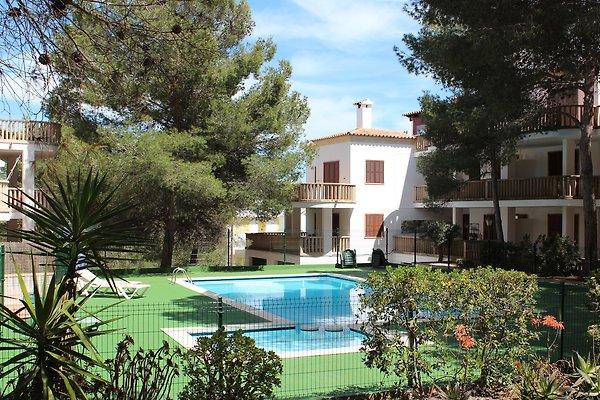 Garten - & Poolbereich