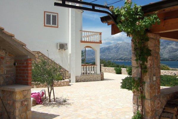 Casa Zlatko en Vinjerac en Vinjerac - imágen 1