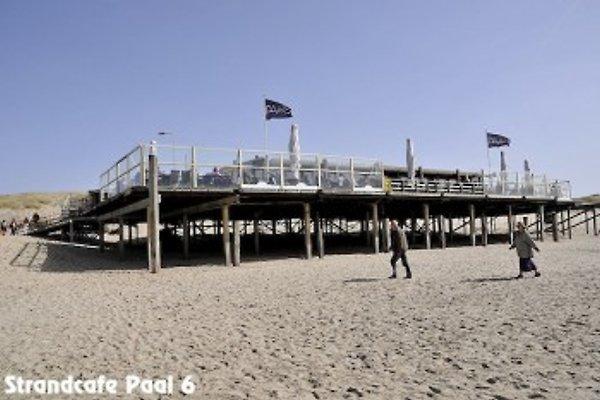 plage Julianadorp perles # 19 à Julianadorp aan Zee - Image 1