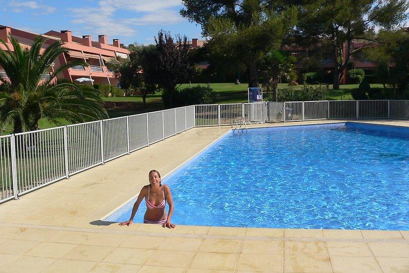 Pool mit Schwimmer und Nichtschwimmerbereich