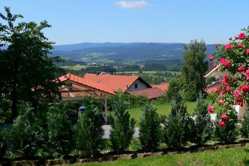 Aussicht von der Terrasse vom Ferienhaus Panorama