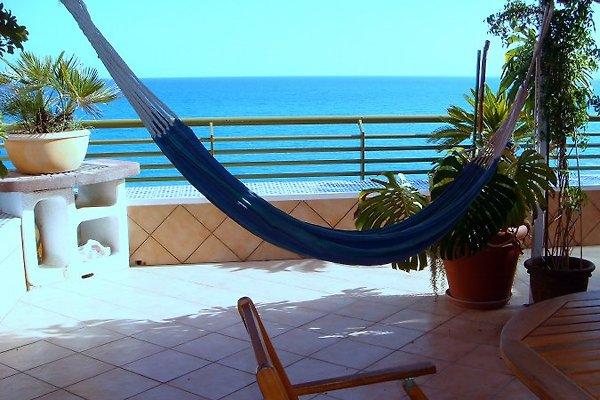Rocafel-Terrasse am Meer