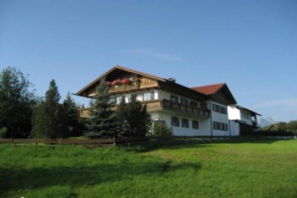 Ferienwohnungen  am Hopfensee  à Hopfen am See - Image 1