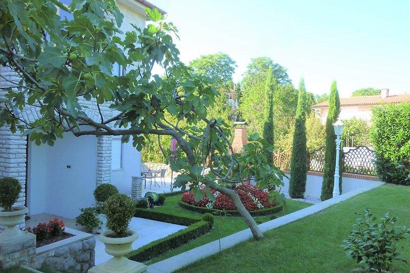 Grillterrasse Garten