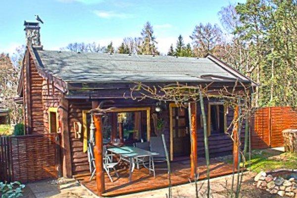 Ferienhaus am Wald und See  à Neuruppin - Image 1