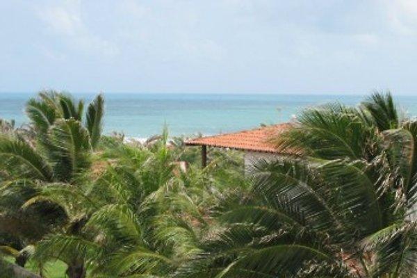 Kite & Surf Strandhaus à Morro do Chapéu - Image 1