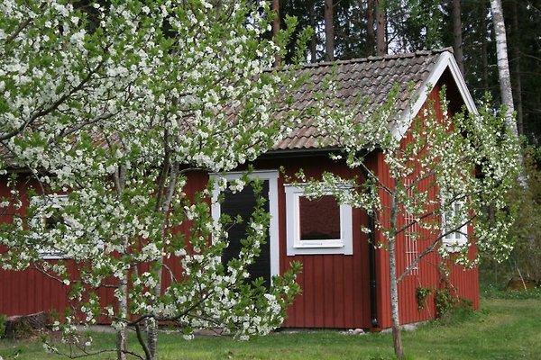 Ahornfarm à Håkannäs (Kristinehamn) - Image 1