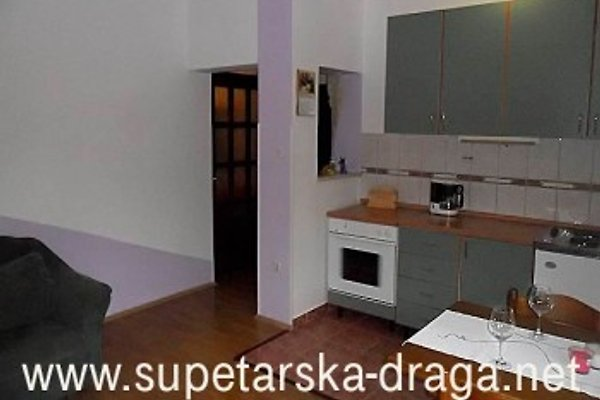 Apartments Poldan in Supetarska Draga - Bild 1