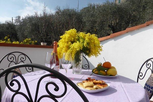 Willkommen in Casa Clara, die Vermieter kochen auch für Sie