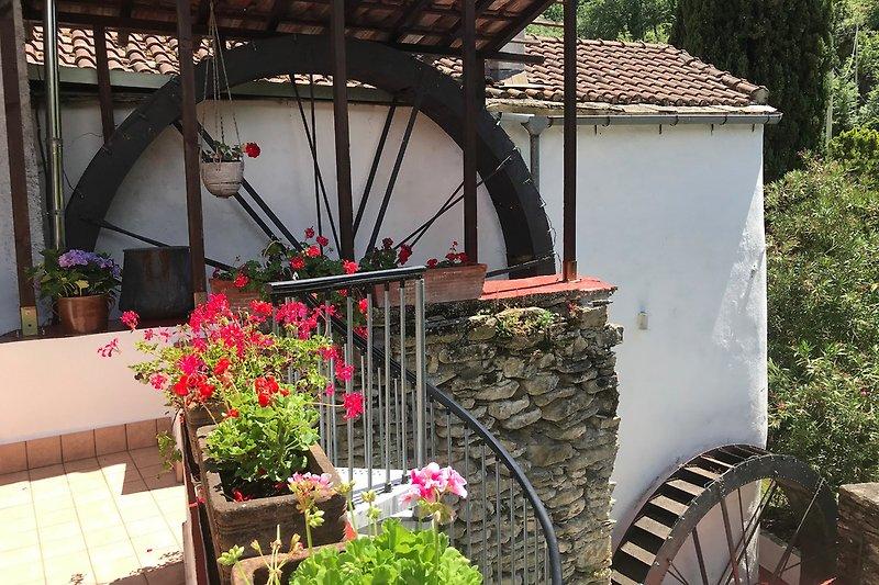 Mühle- Detail
