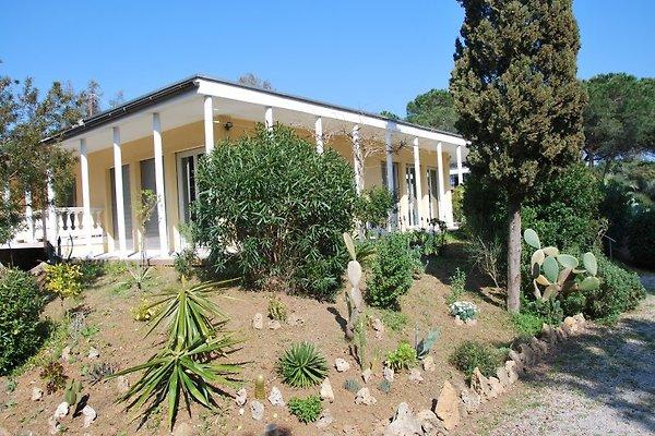 Casa Villa Maja en Lacona - imágen 1