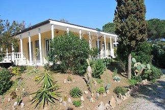 House Villa Maja