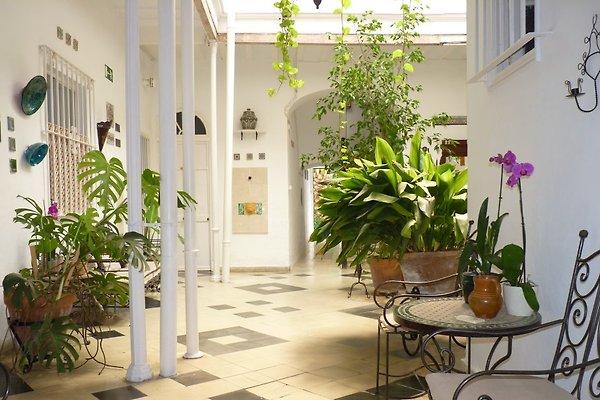 Casa de vecinos 'Rosaleda' en Jerez de la Frontera - imágen 1