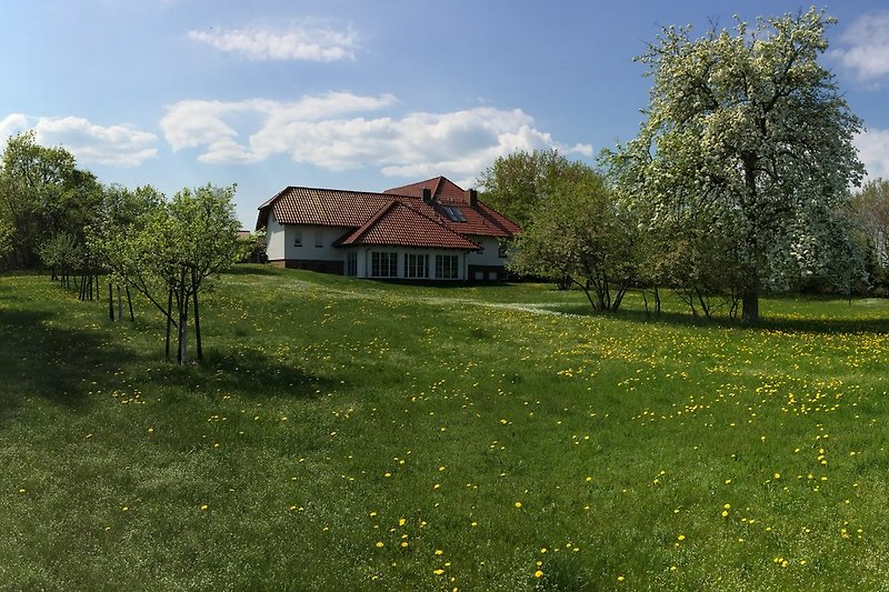 Freistehendes Mehrfamilienhaus mit großem Garten