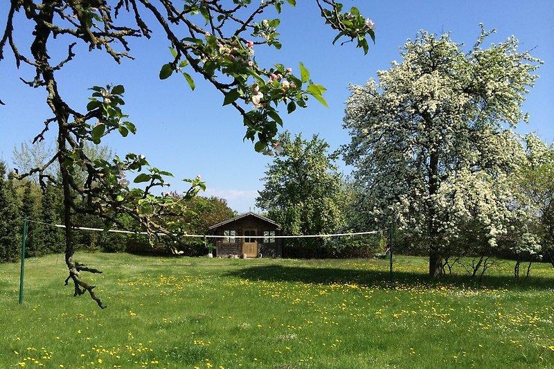 Riesiger Garten mit eigenem Volleballfeld