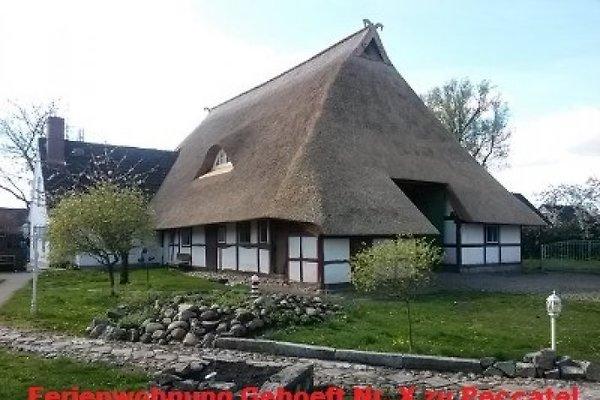 Moderne FeWo im Denkmalgeschütztem Reetdachhaus