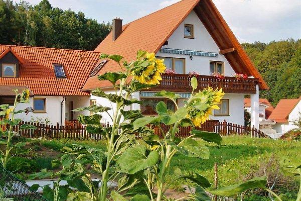 Unser schönes Haus- schauen Sie doch mal bei uns vorbei um Urlaub zu machen -auch mit Hund willkommen