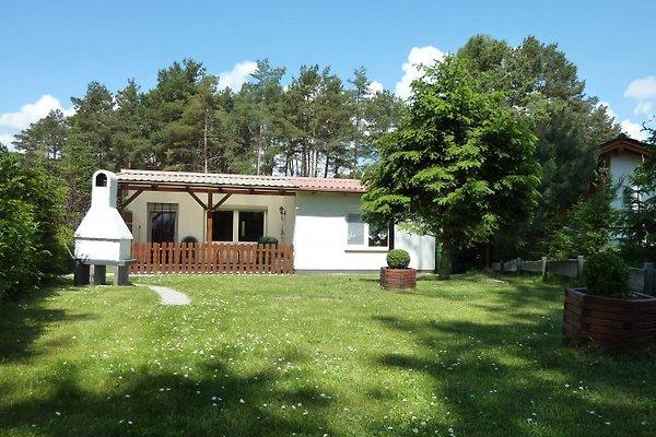Ferienhaus am Fleesensee à Silz - Image 1