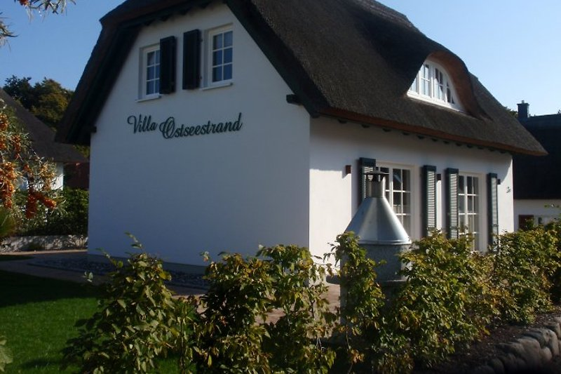 Terrasse mit Steinofengrill