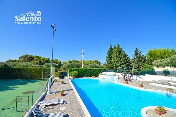 Villa belen con piscina casa vacanze in torre colimena - Piscine gia pronte prezzi ...
