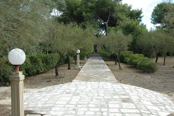 Villa diana 4 met tuin vakantiehuis in punta prosciutto for Diana tuin